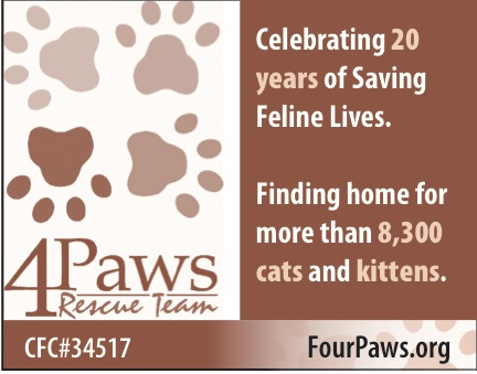 4Paws advertisement