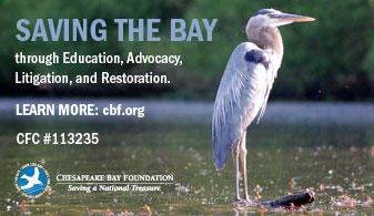 Chesapeake Bay Foundation Ad