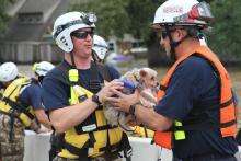 Pet rescue during Hurricane Harvey